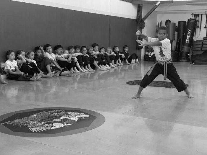 Homeschool martial arts program