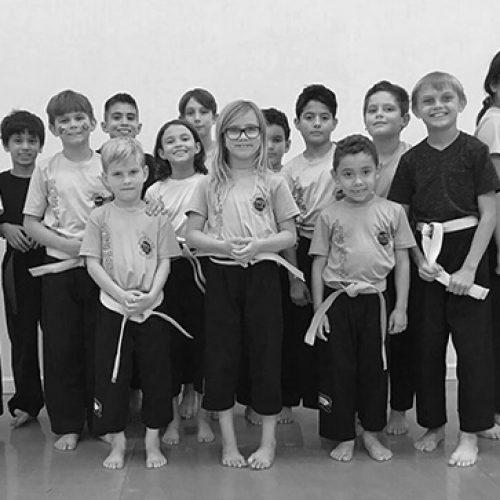 kids martial arts training program